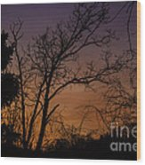 February Sunrise Wood Print