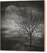 February Tree Wood Print