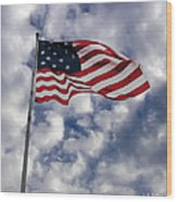 Federal Hill Flag Wood Print by Brian Wallace