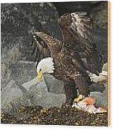 The Ultimate Bald Eagle Wood Print