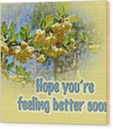 Feel Better Soon Greeting Card - Barberry Blossoms Wood Print