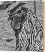 Felicia's Raving Rooster Wood Print