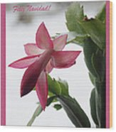 Feliz Navidad Pink Christmas Cactus Photo Greeting Card  Wood Print