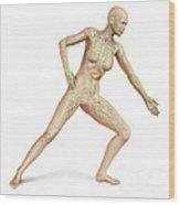 Female Body In Dynamic Posture Wood Print