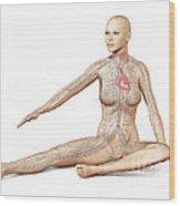 Female Body Sitting In Dynamic Posture Wood Print