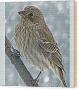 Female House Finch In Snow Wood Print