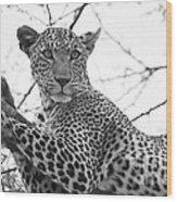 Female Leopard Wood Print