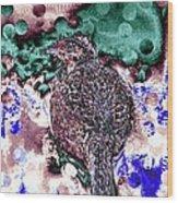 Female Pheasant Abstract Wood Print