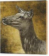 Female Yellowstone Elk Wood Print