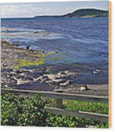 Fence Along Rocky Harbour-nl Wood Print