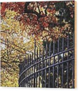 Fence At Woodlawn Cemetery Wood Print