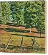 Fence - Featured In Comfortable Art Group Wood Print