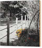 Fence Near The Garden Wood Print by Julie Hamilton