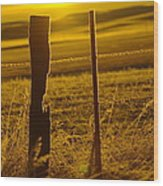Fence Post In The Morning Light Wood Print