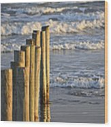 Fence Posts Into The Sea Wood Print
