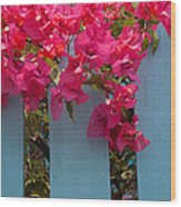 Fence With Bouganvillia Wood Print