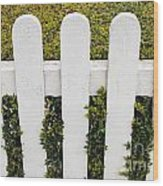 Fence With Hedge Wood Print