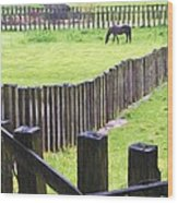 Fenced Wood Print