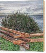 Fenced Grass Wood Print