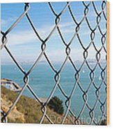 Fenced In Beauty Wood Print
