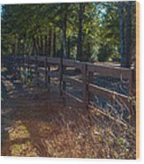 Fenceline 1 Wood Print