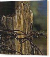 Fenceline 2 Wood Print