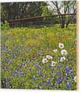 Fenceline Wildflowers Wood Print