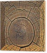 Fencepost Top 1 Wood Print