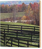 Fences In The Fall Wood Print