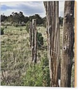 Fences Not Borders Wood Print