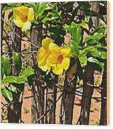Fency Free Brazlian Flowers Wood Print