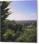 Ferguson Valley Landscape Wood Print
