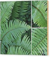 Fern Collage Wood Print