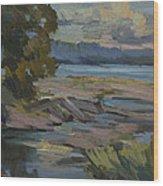 Fern Cove Vashon Island Wood Print