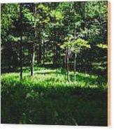 Fern Field Wood Print