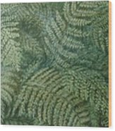 Fern Frenzy Wood Print by Joann Renner