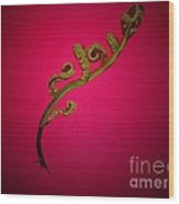 Fern Frond On Red Wood Print