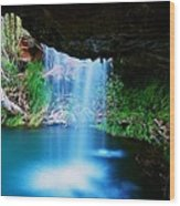 Fern Pool Falls Wood Print