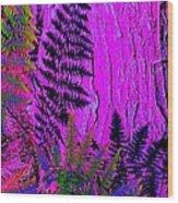 Fern Shadows Wood Print