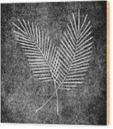 Fern Simple Wood Print by Brenda Bryant