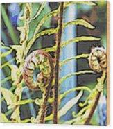 Fern Twirls Wood Print