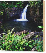 Ferns Flowers And Waterfall Wood Print