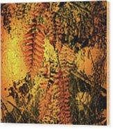 Ferns In Fall Wood Print