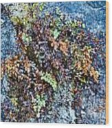 Ferns On Cliffside Wood Print