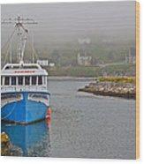 Ferryland Harbour-nl Wood Print