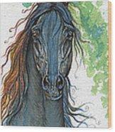 Ferryt Polish Black Arabian Horse Wood Print