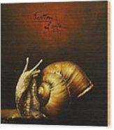 Festina Lente Wood Print