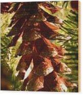 Festive 3 Wood Print