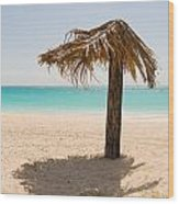 Ffryers Beach Hut Wood Print