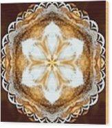 Fiber Optic Gold Wood Print